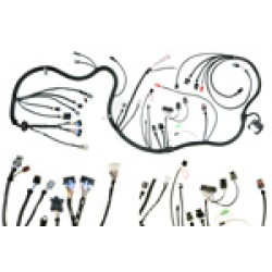 Complete 84/85 Engine Wiring Harness