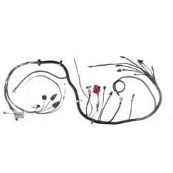 XFI Custom Harness (PLEASE CALL TO ORDER)